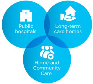 graphic of what we oversee: public hospitals, long-term care homes, community care access centres